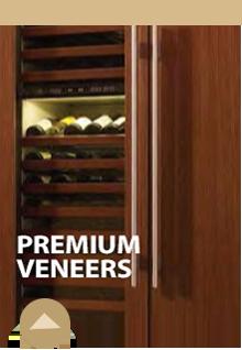 Premium Veneers